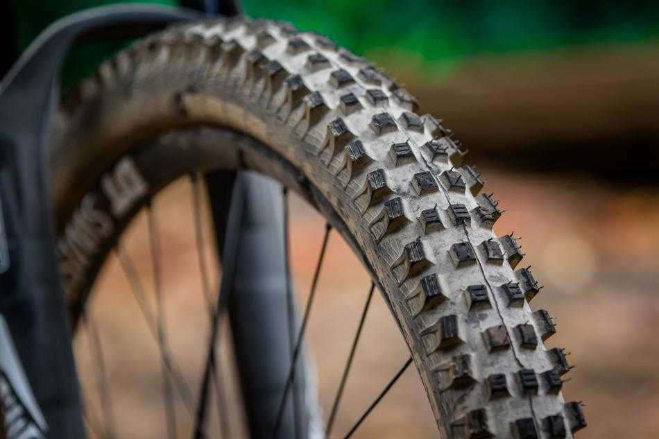 Schwalbe Magic Mary SnakeSkin